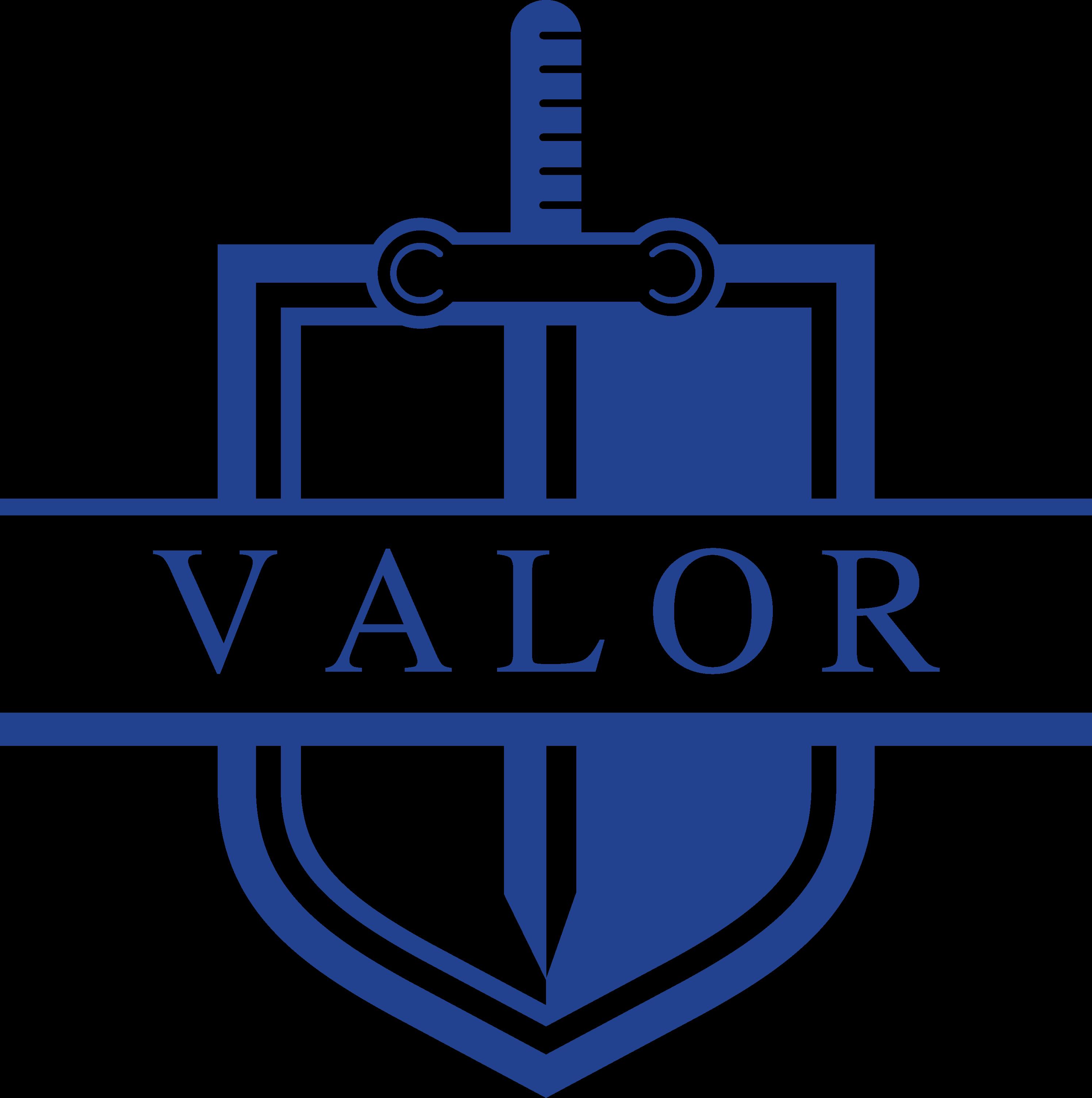 Logos/valor blue hi res.png