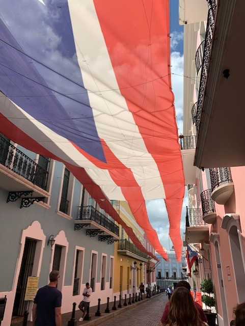Social Distance/6 Vigo Flag.jpg